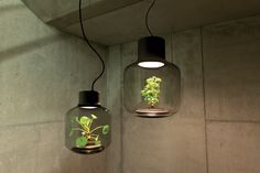 mygdal-plant-lamp-by-nui-studio-©ErwinBlock-Photography-7