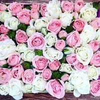 Товары Цветы Букеты Розы в коробке Нижний Новгород