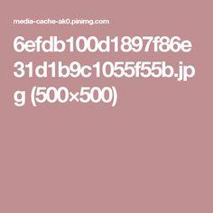 6efdb100d1897f86e31d1b9c1055f55b.jpg (500×500)
