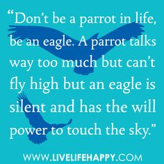 """Don't be a parrot in life, be an eagle. A parrot talks way too much but can't fly high but an eagle is silent and has the will power to touch the sky."" FacebookTwitterPinterestMore"