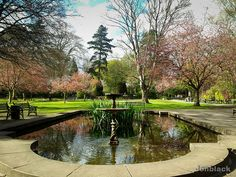 Town Gardens Swindon - another place where Janie liked to paint and J would strum his guitar after school.