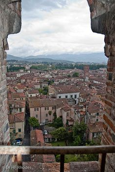 View fromTorre Guinigi, Lucca, Italy