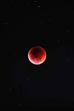 Lunar eclipse, also known as a blood moon. I watched this years eclipse atop a Mesa in the middle of Lake Powell. It was so beautiful I cried. Sun Moon, Stars And Moon, Moon Beauty, Cosmos, Shoot The Moon, Beautiful Moon, To Infinity And Beyond, Science And Nature, Outer Space