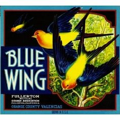 Fullerton, Orange County Blue Wing Orange Citrus Fruit Crate Box Label Art Print