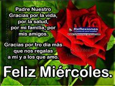 Padre Nuestro, gracias por la vida, por la salud, por mi familia, por mis amigos. Gracias por otro día más que nos regalas a mi y a los que amo. Feliz miércoles