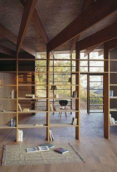Wall-dividing shelves
