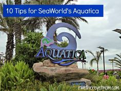 10 Tips for SeaWorld San Antonio's Aquatica ~ San Antonio, TX - R We There Yet Mom? | Family Travel for Texas and beyond...