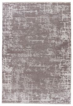 Jaipur Living Denisli DEN03 Gray/Silver Vintage Area Rug
