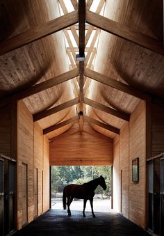 Elongated skylight illuminates stables in Chile by Matias Zegers Architects - wood architecture Timber Roof, Timber Cladding, Cladding Ideas, Timber Architecture, Architecture Details, Architecture Student, Chile, Timber Structure, Horse Stables