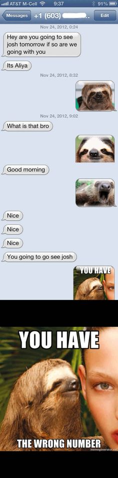The Sloth Approach: | 26 Absolutely Perfect Ways To Respond To A Wrong Number Text
