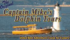 We took a dolphin tour this summer and saw LOTS of dolphins.  Even some baby dolphins!