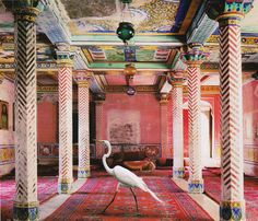 Stunning Photograph by Karen Knorr from India Song series