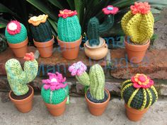 Crochet cactus. This would be a fun pincushion...