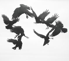 The further myths or facts of Crow.           Artist's     in     Progress        