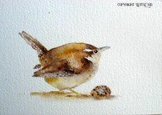 'CAROLINA', bird egg painting Carolina Wren watercolor original - free shipping within continental USA. by WitsEnd via Etsy. SOLD