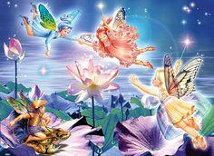 Magic Water Lily by Zorina Baldescu