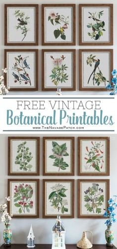 How to Easily Create a Gallery Wall and Free Botanical Printables - Wandgestaltung Diy Wall Art, Diy Wall Decor, Diy Art, Art Decor, Decor Ideas, 31 Ideas, Decor Crafts, Diy Crafts, Craft Ideas