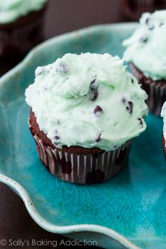Chocolate Cupcakes with Mint Chocolate Chip Frosting by sallysbakingaddiction.com