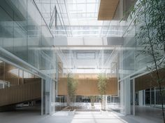 Gallery of Dave & Bella Headquarters / LYCS Architecture - 11
