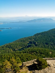 San Juan Islands Weekend Adventure | How to enjoy a long summer weekend with the artists, eagles, foodies, and whales