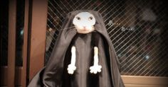 These Cat Cosplay Will Make Your Day