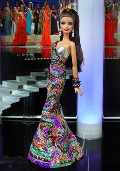Miss Chile 2013 / 2014