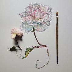 Мечты о весне от Noel Badges Pugh | Заметки Сакумы