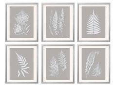 Gray White Wall Art Fern Botanical Prints by BeachHouseGallery