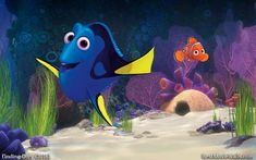 Dory and Nemo are saying hi on this beautiful ocean wallpaper hd :} #FindingDory