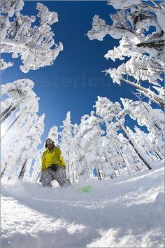 Durch ihre Vorliebe für waghalsige Sprünge, zieht es Snowboarder immer wieder in die Snowparks der Wintersportgebiete. Aber auch abseits der Piste erkunden Snowboarder den Tiefschnee und stehen Modell für winterliche Fotoposter...