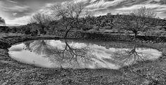 the pond - a pond filled with rainwater somewhere near aigeai ;an ancient town near aliaga,izmir,turkey