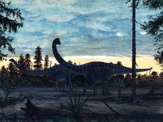 Diplodocus by brian franczak