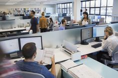 View top-quality stock photos of Business People Working In Open Office. Find premium, high-resolution stock photography at Getty Images. Open Office, City Office, Office Cubicle, Linux, Office Hacks, How To Motivate Employees, Minimum Wage, Business Technology, Career Advice