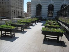 Fairmont Hotel Herb Garden - San Francisco, CA - via http://talestoldfromtheroad.com/wp-content/uploads/2012/04/Fairmont-Herb-Garden-without-Stairway-or-People.png