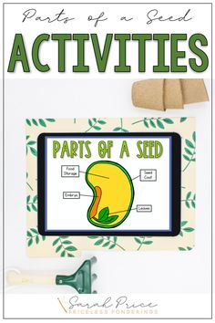 Your second graders will learn and have fun at the same time! If low-prep parts of a seed lesson plans are your thing, then click the picture to learn more. Science Curriculum, Science Resources, Interactive Activities, Hands On Activities, Science Activities, Classroom Activities, Vocabulary Sentences, Vocabulary Cards, Fun Writing Prompts