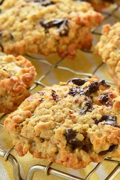 Oatmeal Chocolate Coconut Chewy Cookies Recipe with Chocolate Chips