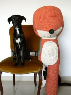 El blog de Dmc: Entrevistamos a Yanina de Pica-Pau  (I Swear this dog is related to Sadie!!)