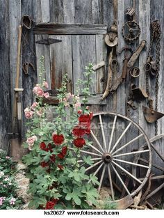 Wagon's with flowers - Google Search