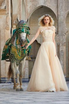 Stephanie Allin Couture | Spring 2013 Collection