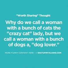 Crazy Cat Lady or Dog Lover http://shutupimtalking.com/crazy-cat-lady-or-dog-lover/