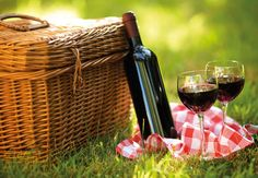 Vegan Wine & Cheese - check out the site Picnic Spot, Picnic Time, Summer Picnic, Summer Fun, Healthy Picnic, Wine Facts, Vegan Wine, Wine Country Gift Baskets, Wine Photography