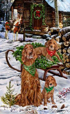 Irish Setter Christmas Holiday