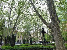 Adoquines y Losetas.: Plaza de la Cruz