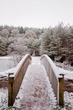 Mallards Pike Path, Forest of Dean, Gloucestershire, England