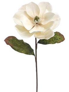 Beige Silk Magnolia