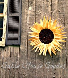 Welcome to PHM: A Sunflower Tutorial for you!!!