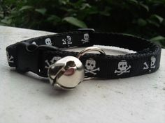 Pinned onto Cat Collars Board in Cat Accessories Category Creepy Cat, Cat Pumpkin, Marco Polo, Cat Accessories, Cat Collars, Kitty, Belt, Assassin, Christmas Presents