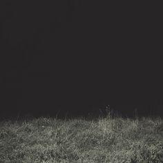 garmonique [flickr]