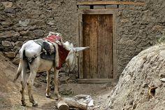 Bashor village, Shughnan, Afghanistan 001 | Flickr - Photo Sharing!