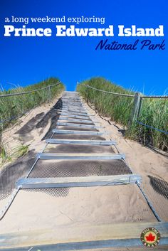 A Long Weekend Exploring PEI National Park. Read more about our time visiting PEI National Park. Prince Edward Island, Tourist Spots, The Province, White Sand Beach, Long Weekend, Wonderful Places, Railroad Tracks, Exploring, This Is Us